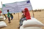 ajuda-humanitaria